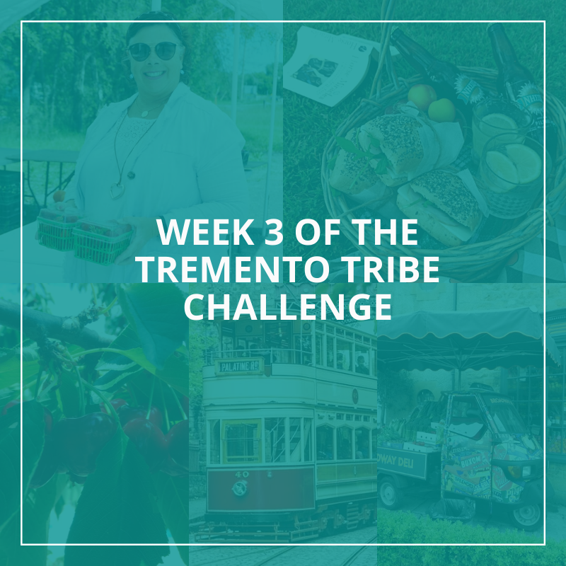 Week 3 Tremento Tribe Challenge - Hospitality Social Media Marketing